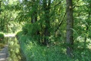 Schneiderhof (Myslív)