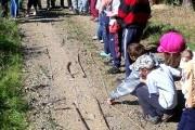 2011 Venkovská krajina očima dětí