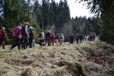 komentovaná procházka po křížcích a kamenech v okolí zaniklé obce Lísková